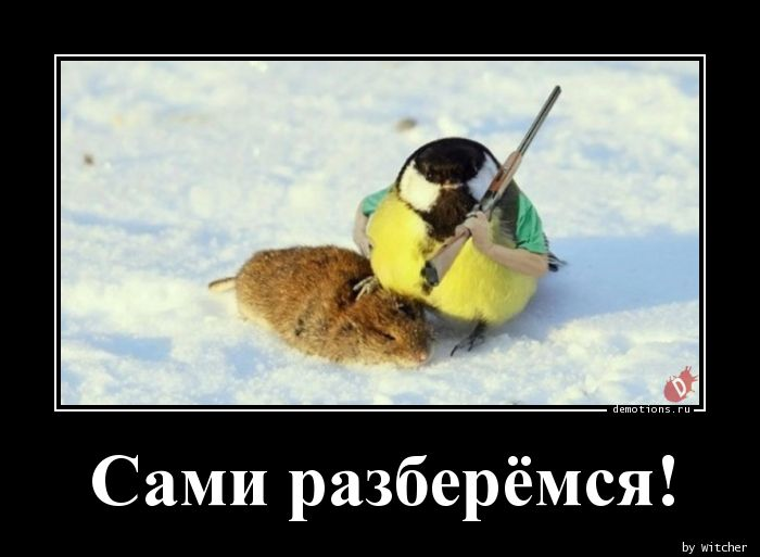 1590652952_Sami-razberemsya.jpg