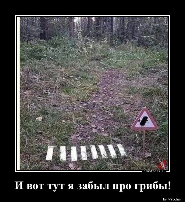 1590413630_I-vot-tut-ya-zabyl-p.jpg