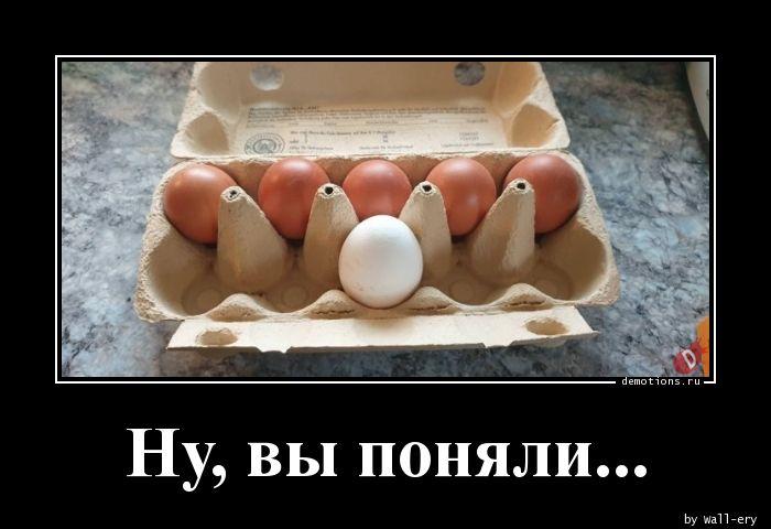 1590310794_Nu-vy-ponyali..jpg