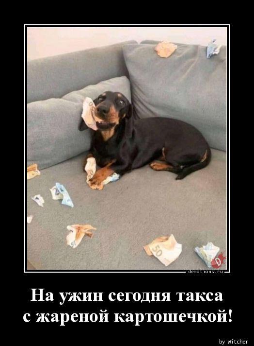 1592203874_Na-uzhin-segodnya-ta.jpg