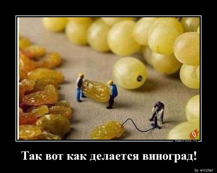 1592208078_Tak-vot-kak-delaetsy.jpg