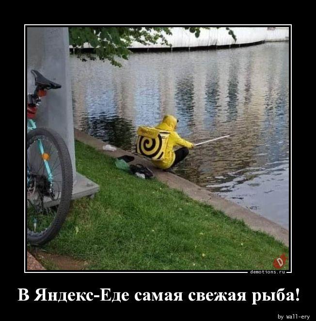 1592237937_V-Yandeks-Ede-samaya.jpg