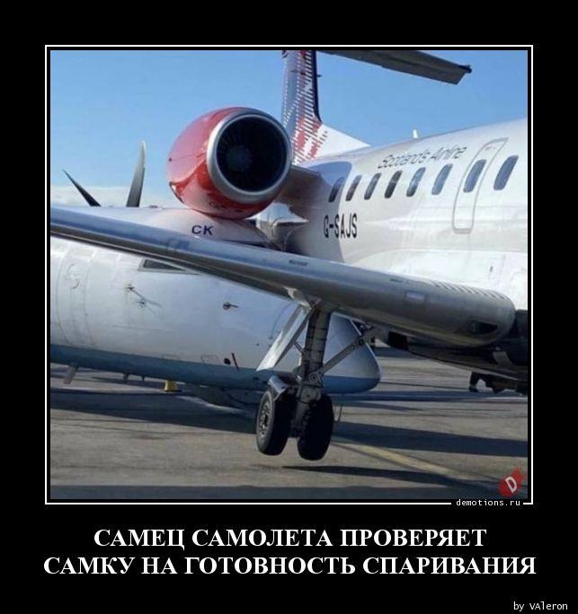 1592445689_SAMEC-SAMOLETA-PROVE.jpg