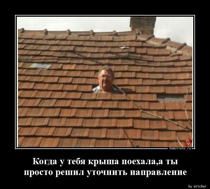 1592638503_Kogda-u-tebya-krysha.jpg