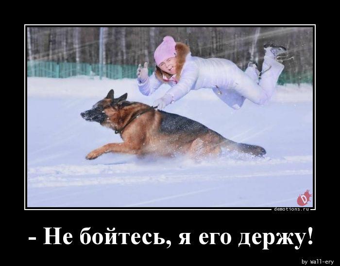 1593020410_-Ne-boytes-ya-ego-de.jpg
