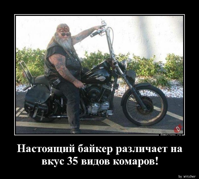 1595008850_Nastoyaschiy-bayker-.jpg