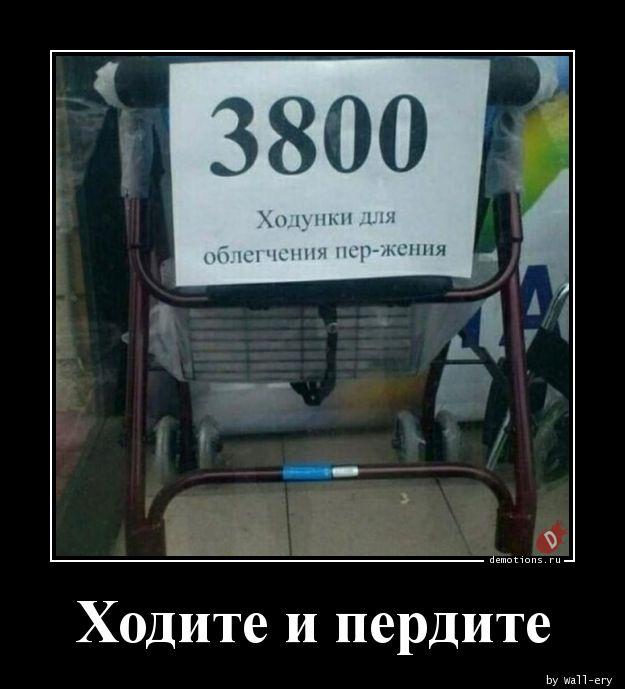 1594921021_Hodite-i-perdite.jpg
