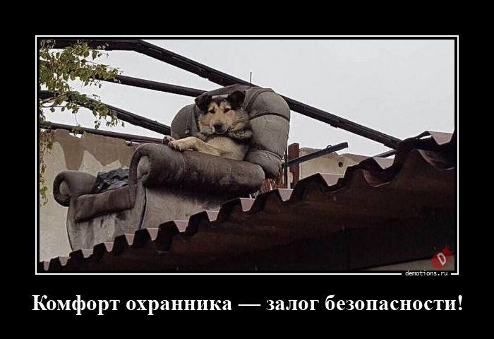 1595833490_demotivatory-18.jpg