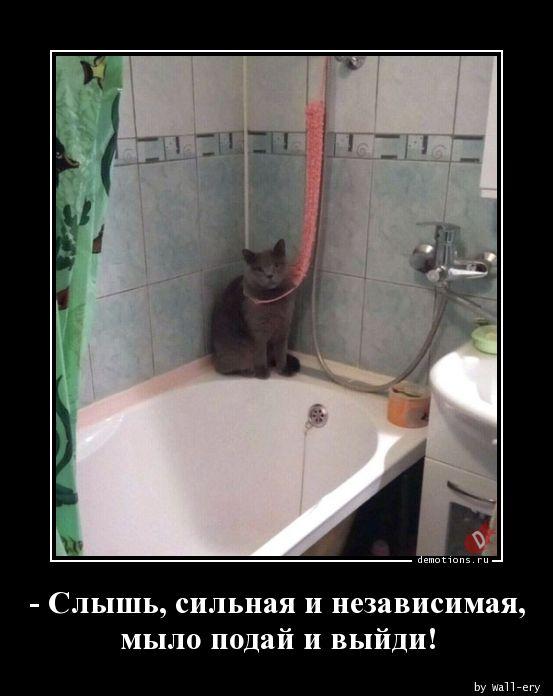 1585390239_-Slysh-silnaya-i-nez.jpg