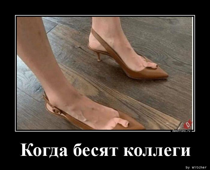 1596018664_Kogda-besyat-kollegi.jpg