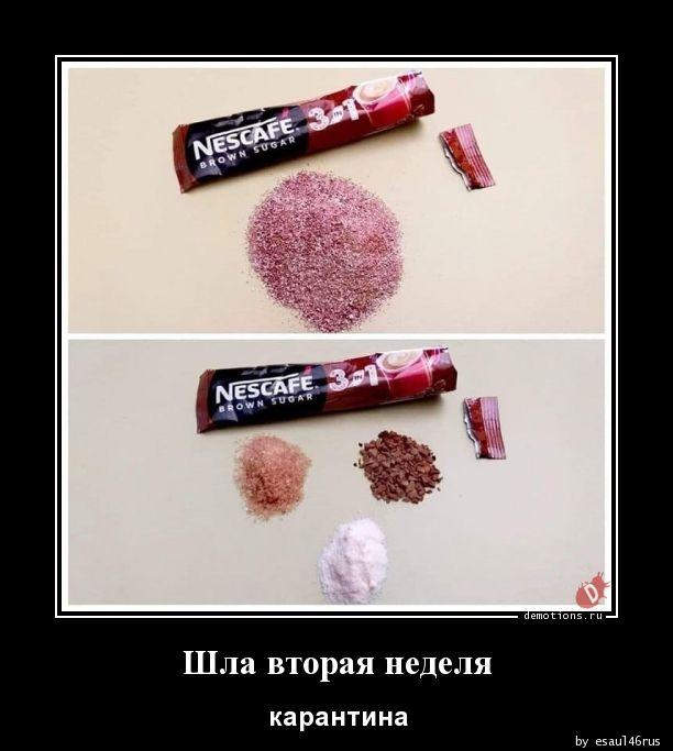 1585219695_Shla-vtoraya-nedelya.jpg