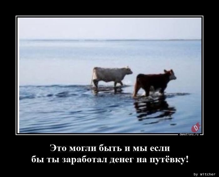 1596004651_Eto-mogli-byt-i-my-e.jpg
