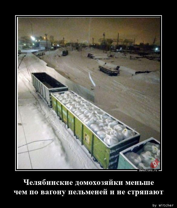 1597131635_Chelyabinskie-domoho.jpg