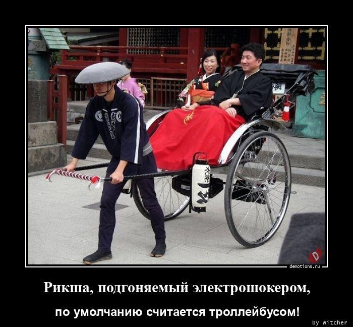 1596379340_Riksha-podgonyaemyy-.jpg