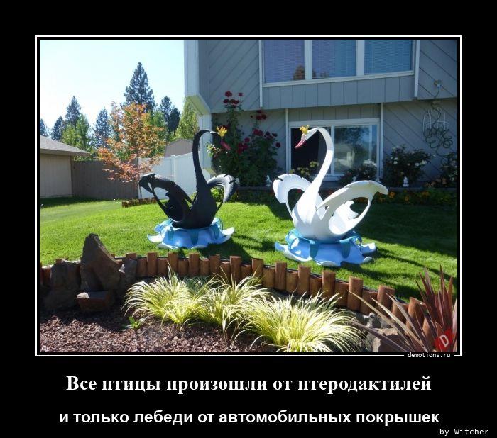 1597746281_Vse-pticy-proizoshli.jpg