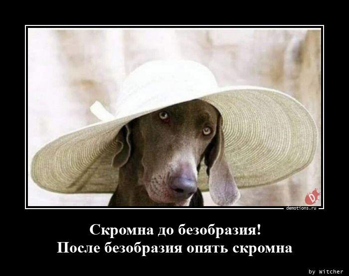 1598712994_Skromna-do-bezobrazi.jpg