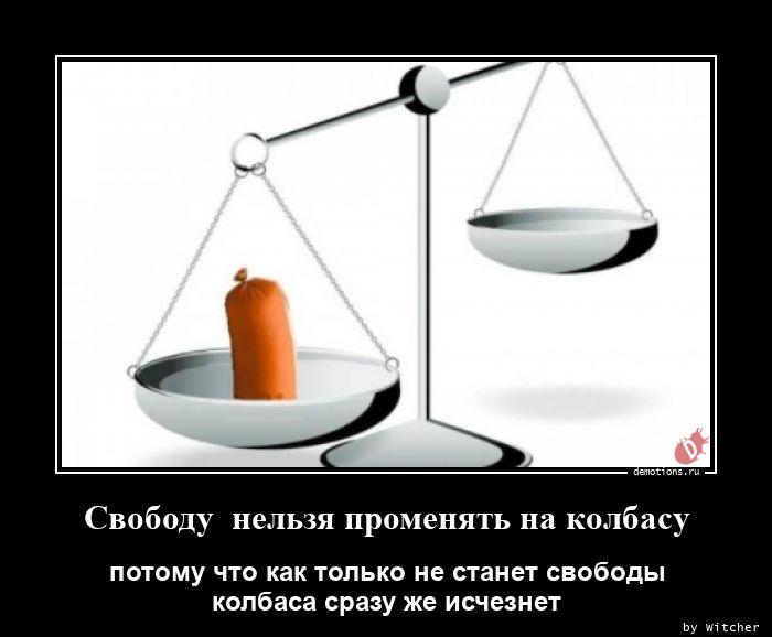 1598517077_Svobodu-nelzya-prome.jpg