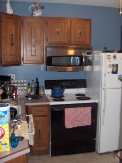 New Microwave/Convection Oven (over the range)