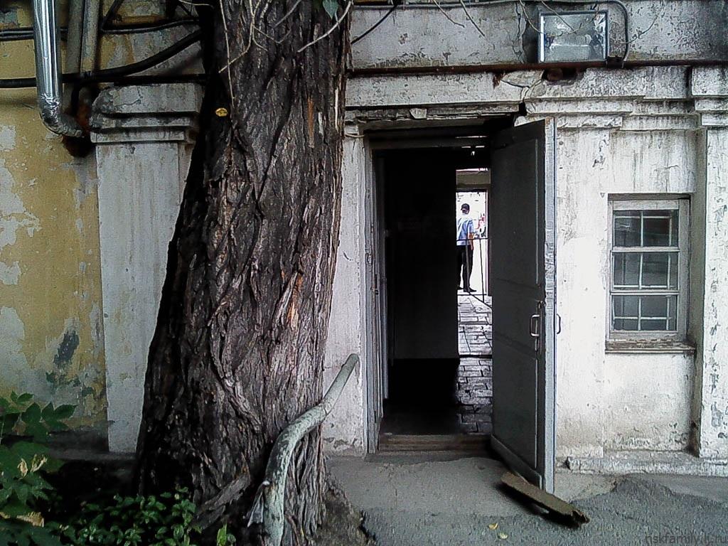 2015.08.20.Novosibirsk-04.jpg