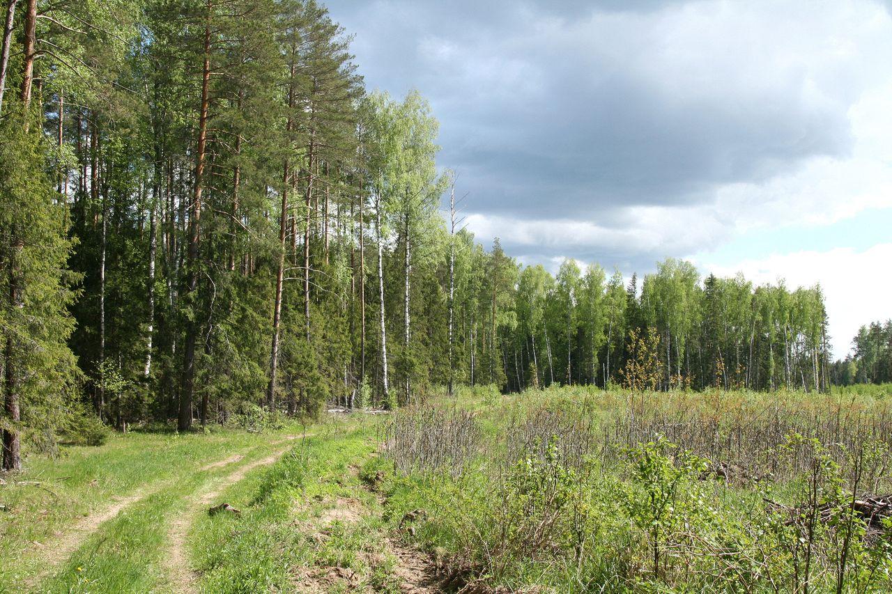 uriev_polsk_svoznya_krug_280517_ed_24_std.jpg