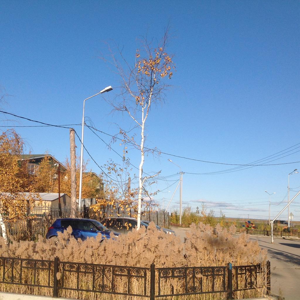 Yakutsk_220917_15.JPG