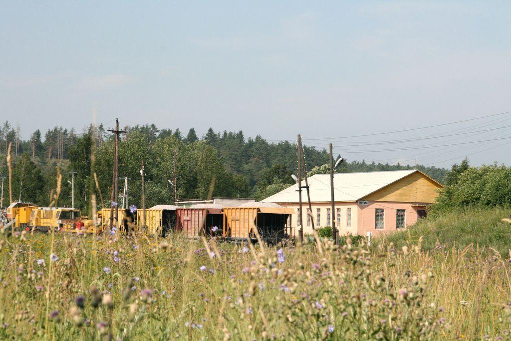 priozersk_hyitola_2011_07_std