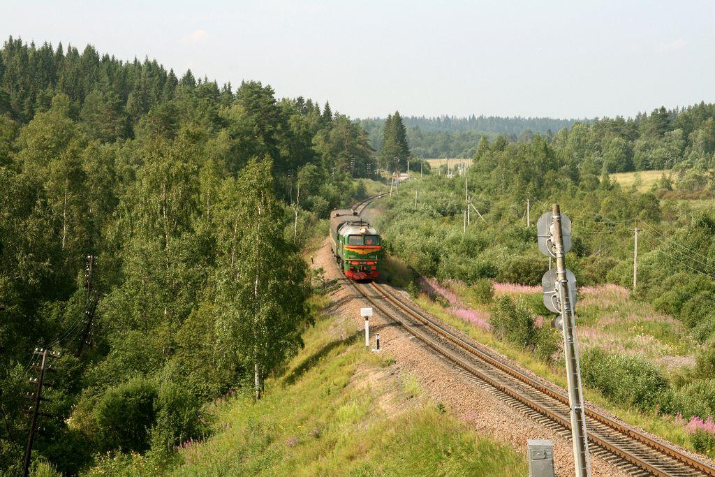 priozersk_hyitola_2011_16_std