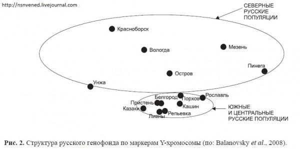 Казаки и русские