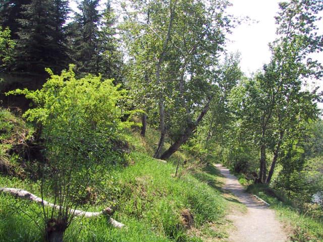 trail alongside Bow River