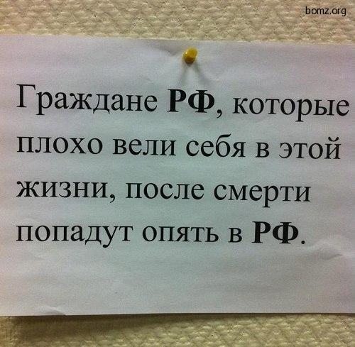 998464-2012.03.06-08.36.33-bomz.org-lol_grajdane_rf_kotoriye_ploho_sebya_veli_v_yetoyi_jizni_posle_smerti_popadut_opyat_v_rf