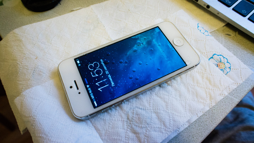 Спасаем свежеутопленный iPhone 5 DSC05653