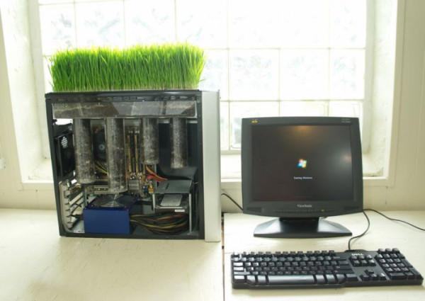 computer_planter_17
