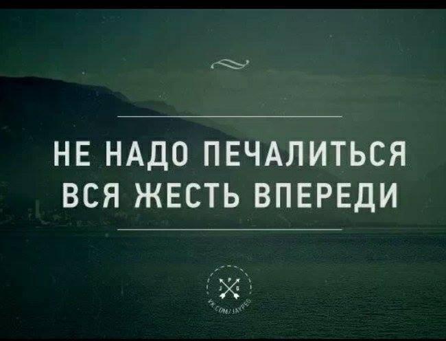 1486880_228604637311332_862807078_n