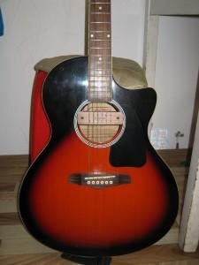 Гитара (24)