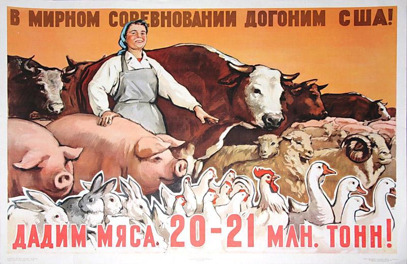 Советский плакат на тему: «В мирном соревновании догоним США. Дадим мяса 20–21 млн тонн!»