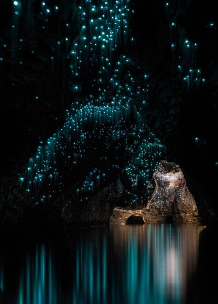 Светлячки в пещерах