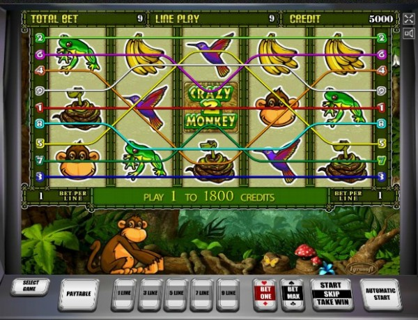 Crazy Monkey 2 слот