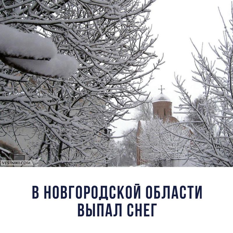 зима 2018.jpg