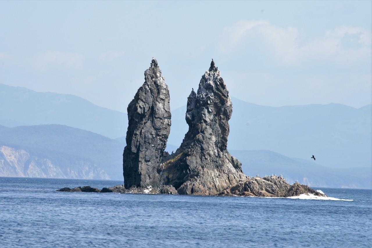 Берег Японского моря