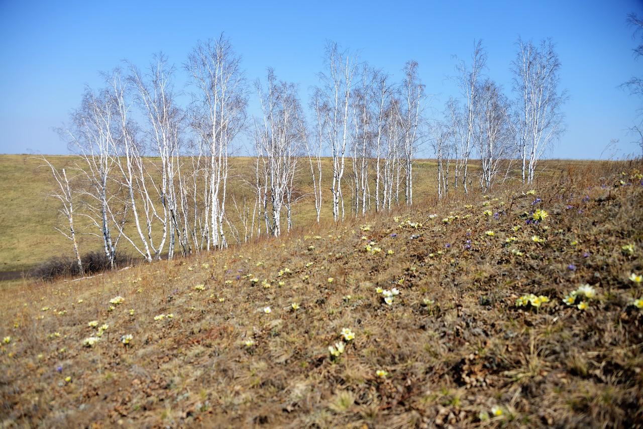 На холмах Усть-Орды