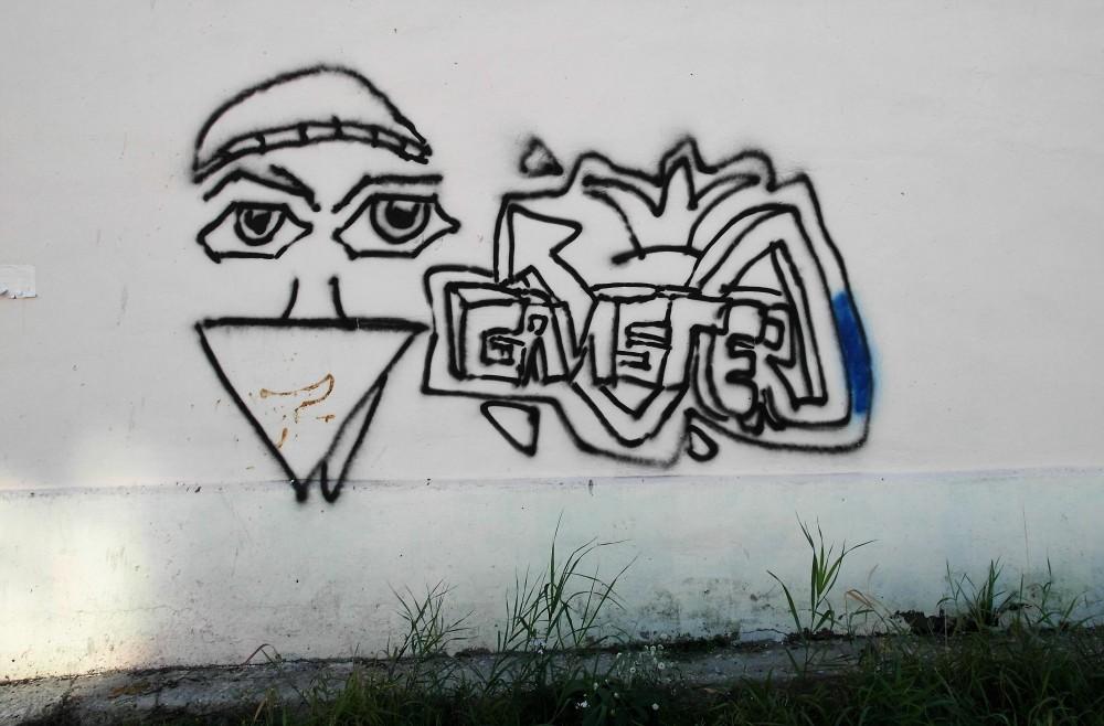 SAM_0869.jpg