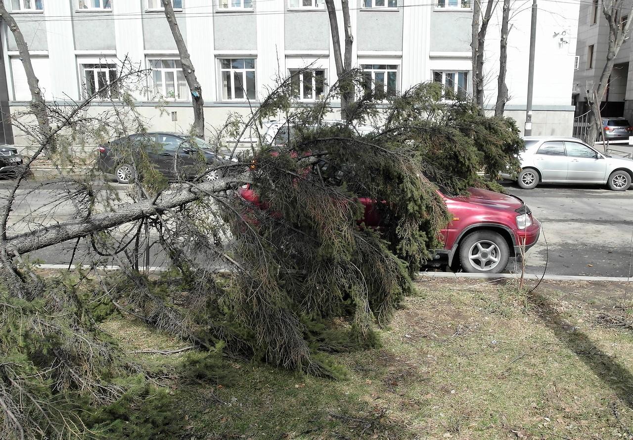 В Иркутске штормит