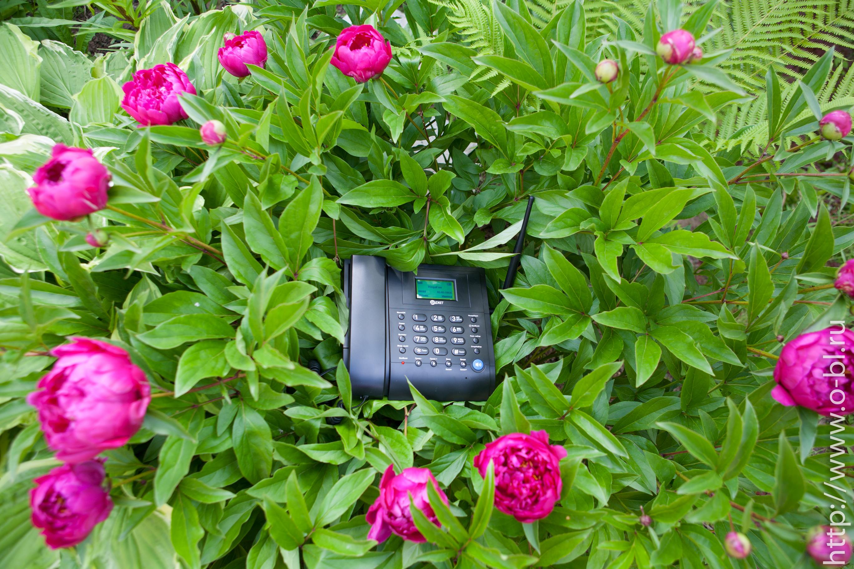 Ничто не мешает использовать телефон и на улице