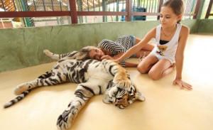 Посещение тигриного королевства