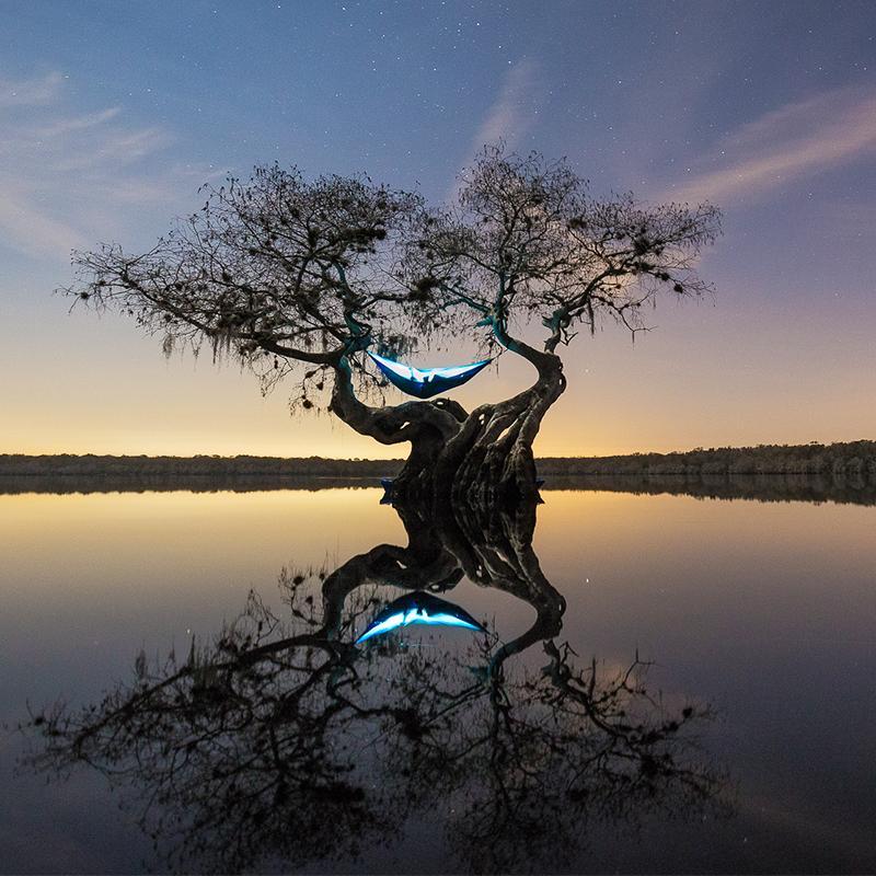 Кто-то отдыхает на дереве на озере с красивым закатом