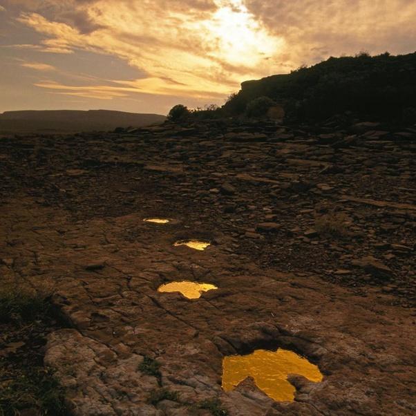 следы динозавров мелового периода, найденные в Эль-Чоконе, Аргентина
