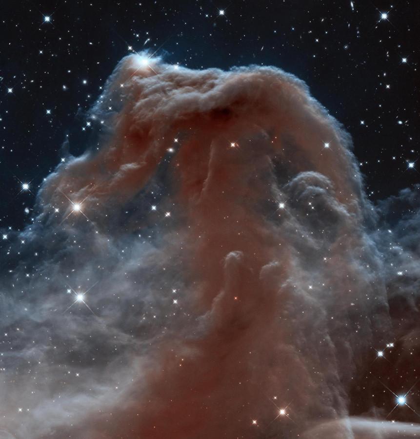 Туманность лошадиная голова освещаются Сигмой Орионис, молодой пятизвездочной системой изображение с космического телескопа Хаббл