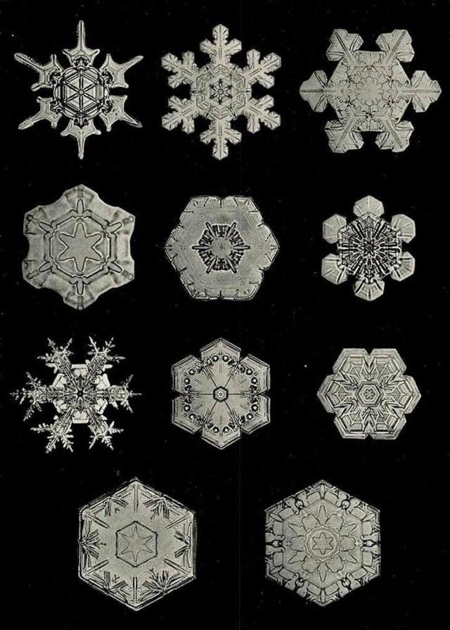 Бентли потребовалось два года проб и ошибок. 15 января 1885 года, в возрасте 19 лет, он смог адаптировать микроскоп к большеформатной камере и сделать, наконец, первую в мире микрофотографию снежинки. В течении своей жизни он снял более 5000 снежинок, так и не найдя двух одинаковых.