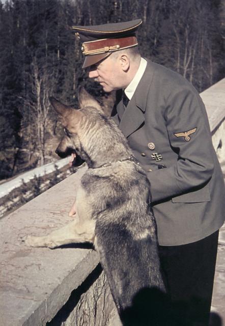 Собака-Гитлер