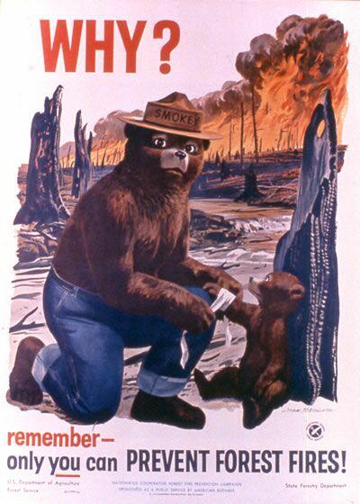 Два мира, два образа жизни Smokey Bear